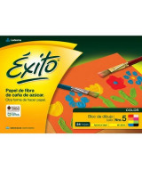 BLOCK LEDESMA EXITO P/DIBUJO COLOR N*5 24hj.- 100008  (x1)