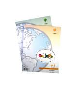 MAPAS ALFA  T/CARTA ISLAS MALVINAS POL.-BLOCKx40  (x1)